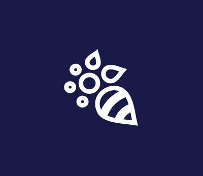 Flower Nordic Walking logo design
